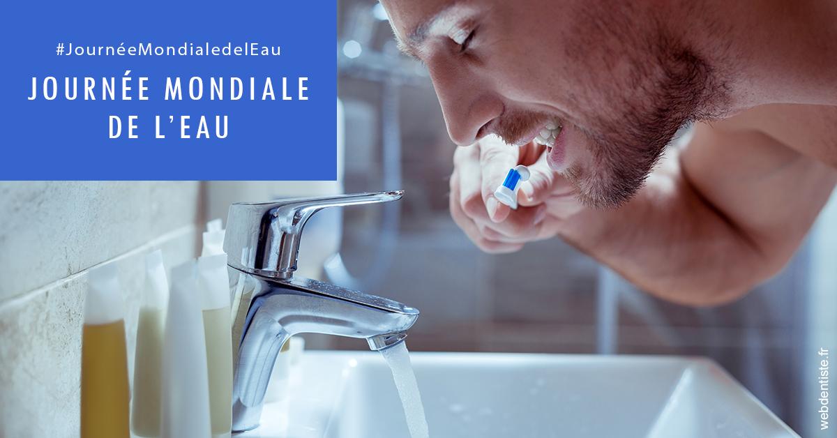 https://dr-alexandre-fevre.chirurgiens-dentistes.fr/Journée de l'eau 2