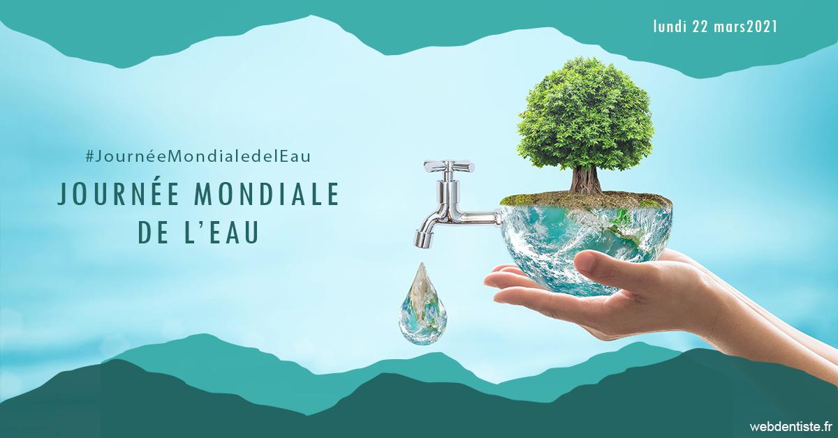 https://dr-alexandre-fevre.chirurgiens-dentistes.fr/Journée de l'eau 1